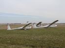 WGC 2006_244